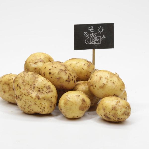 Pommes de terre nouvelles chair ferme