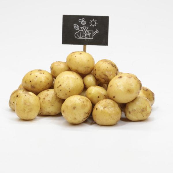 Pommes de terre grenaille nouvelles