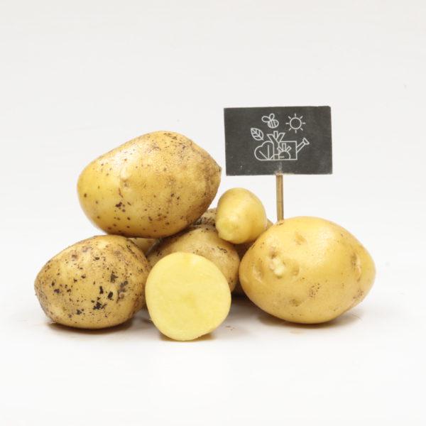 Pommes de terre chair ferme Vitabella