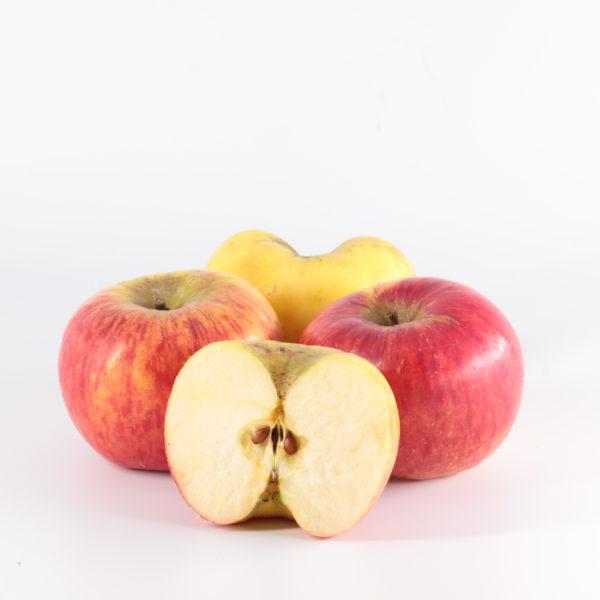 Pommes Topaz