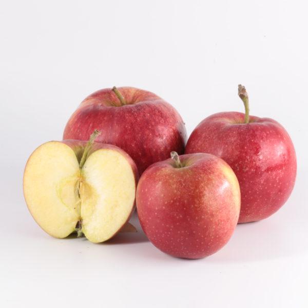 Pommes Elstar