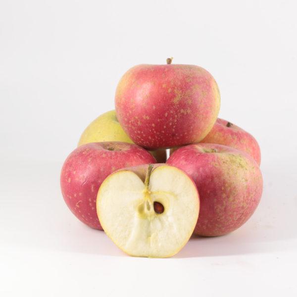 Pommes Reinette étoilée