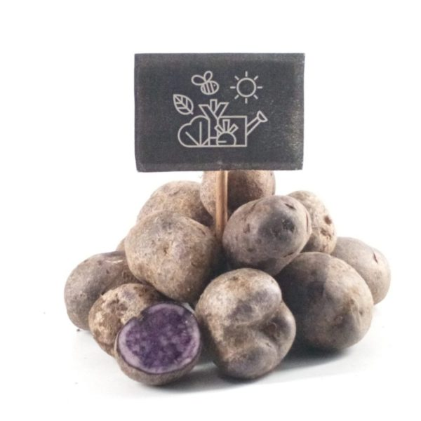 Pommes de terre grenaille  bleu